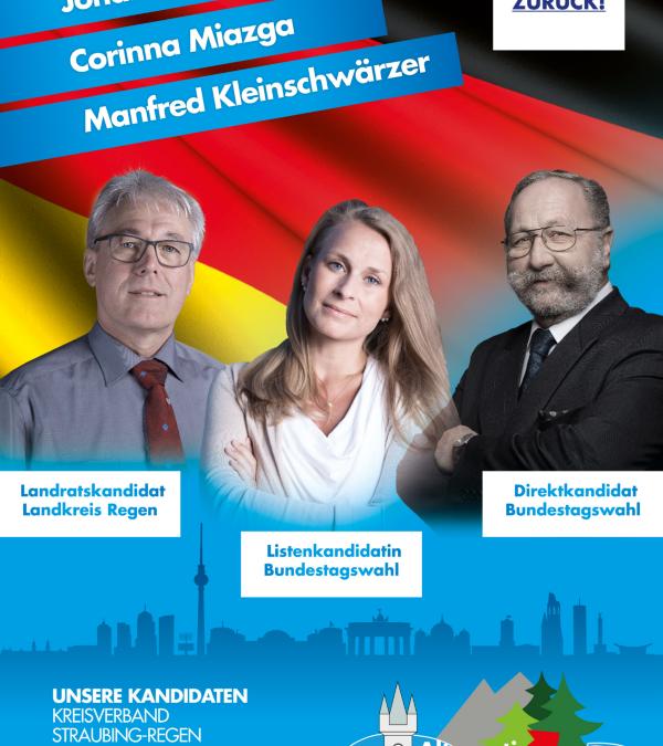Kandidatenflyer Straubing