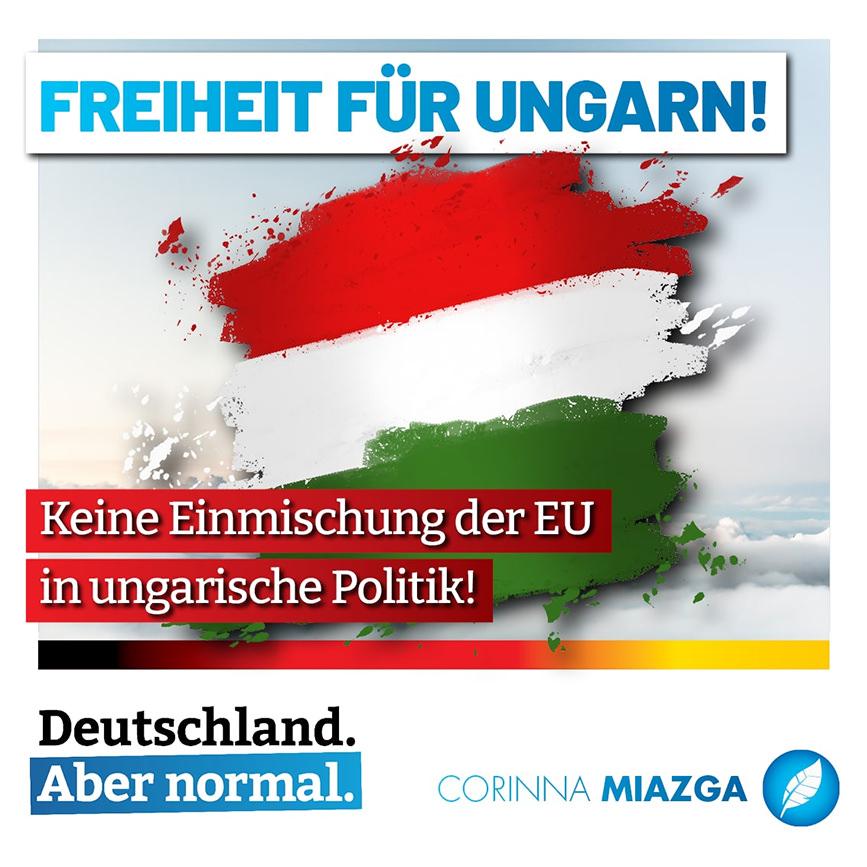 Solidarität mit Ungarn – Bundestagsabgeordnete Miazga kritisiert von der Leyen